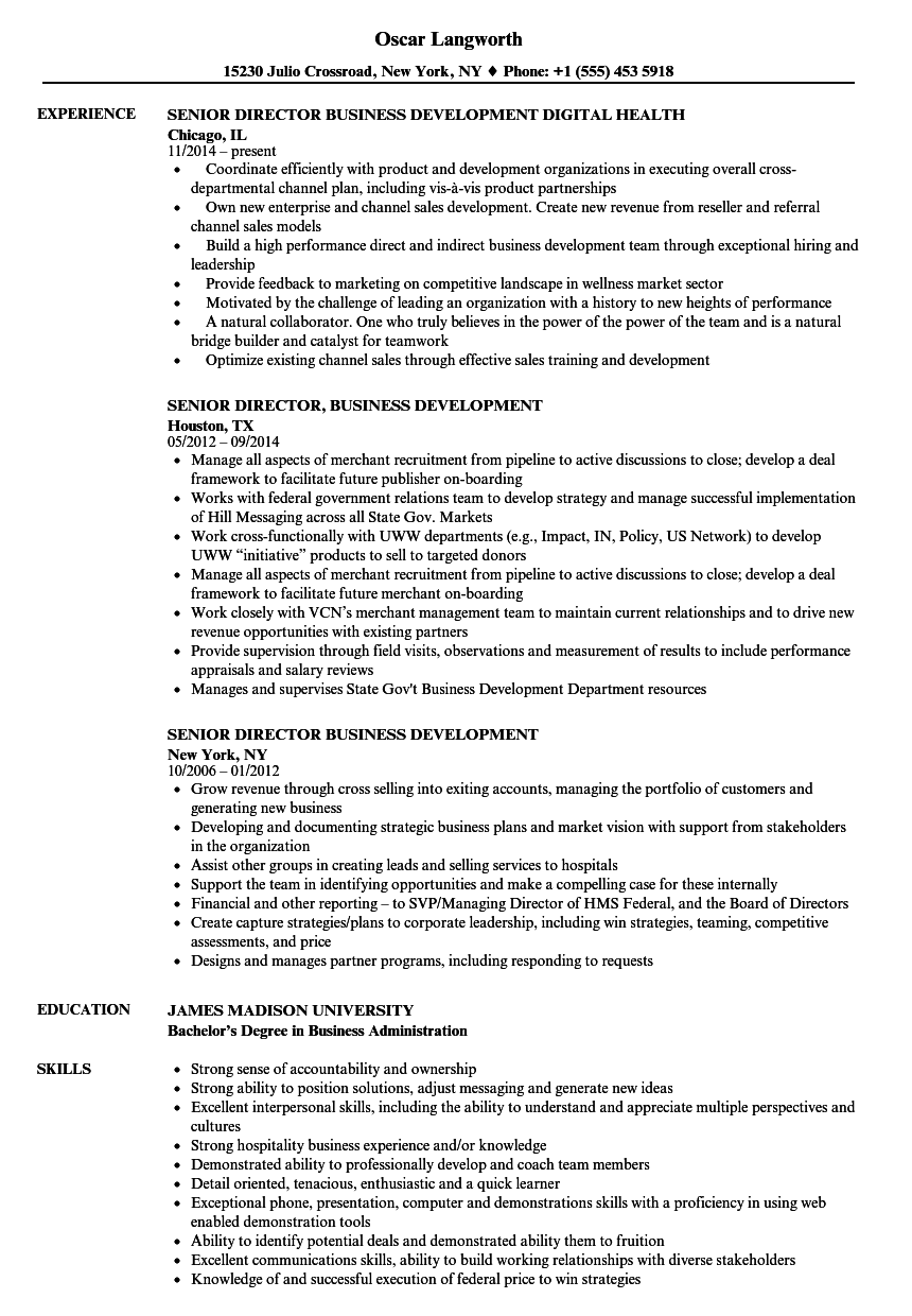 sample business development resume objectives