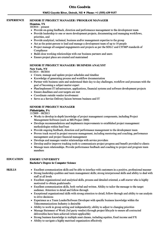 resume unit testing example
