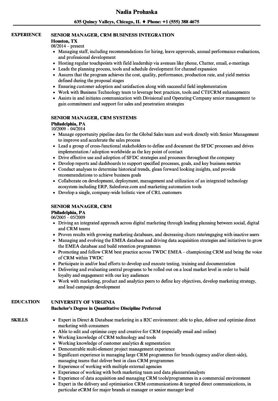 crm consultant sample resume