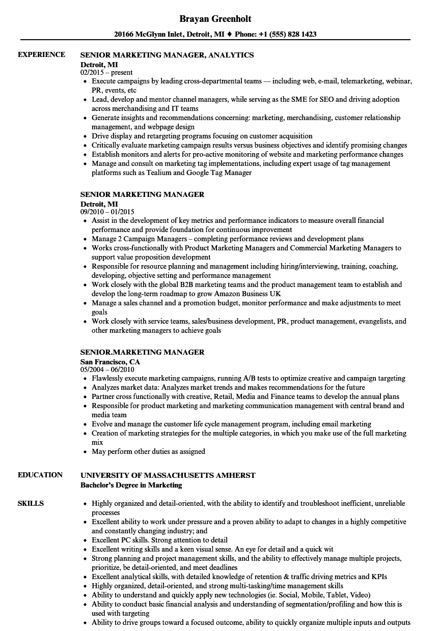 Senior Marketing Manager Resume Sample  Resume Ideas