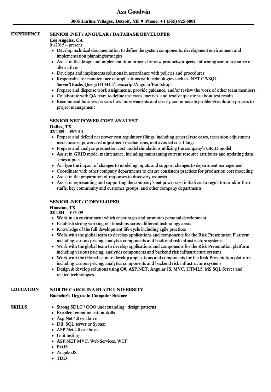 Senior NET Resume Samples Velvet Jobs
