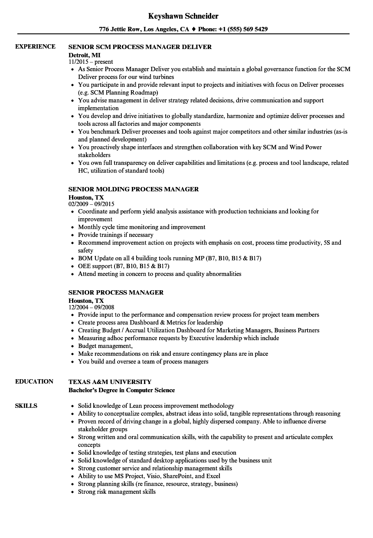 Senior Process Manager Resume Samples  Velvet Jobs