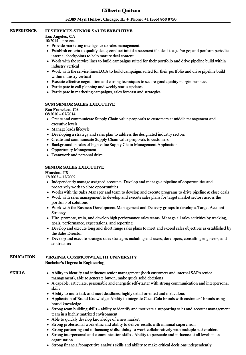 sale executive resume samples