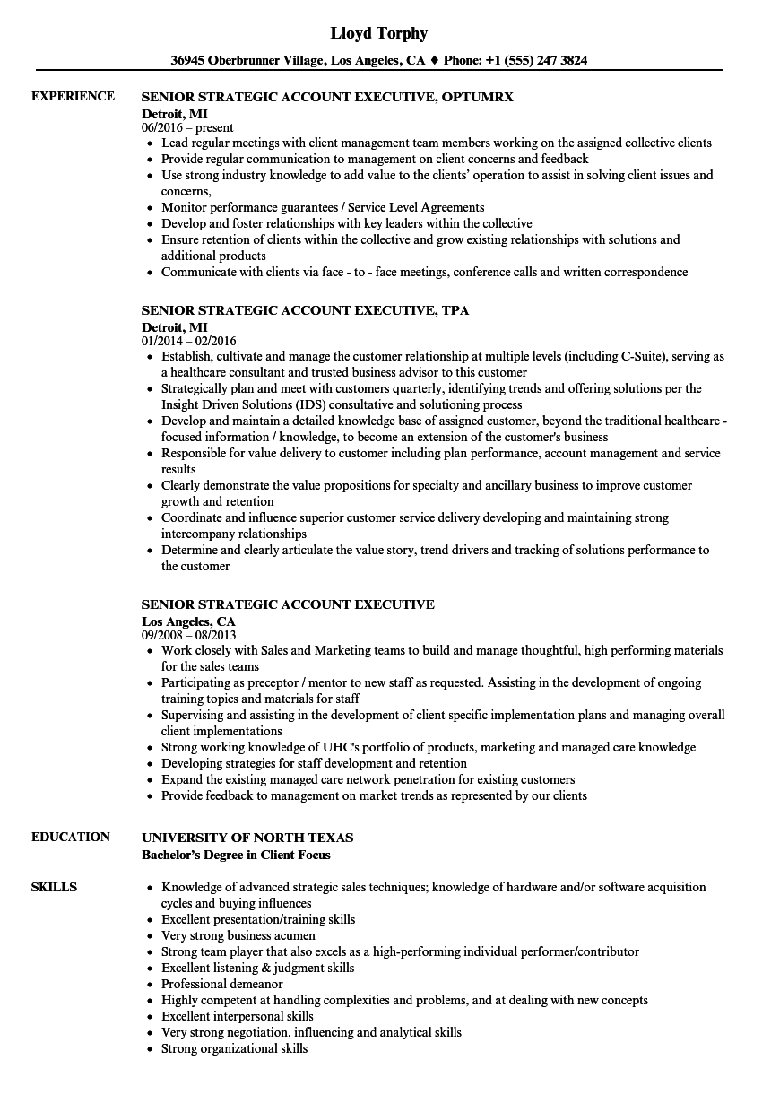 Senior Strategic Account Executive Resume Samples Velvet