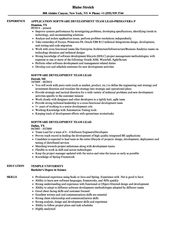 sample java team lead resume