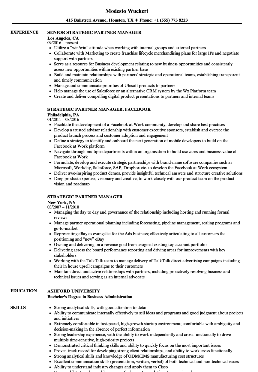 sample resume partner manager