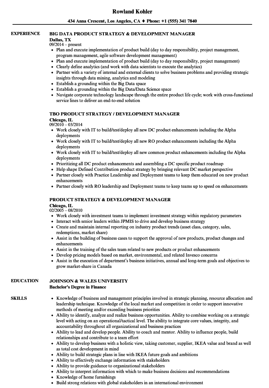 Download Strategy & Development Manager Resume Sample As Image File