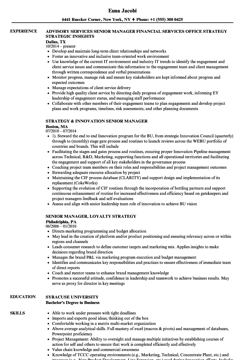 Download Strategy Manager / Senior Manager Resume Sample As Image File