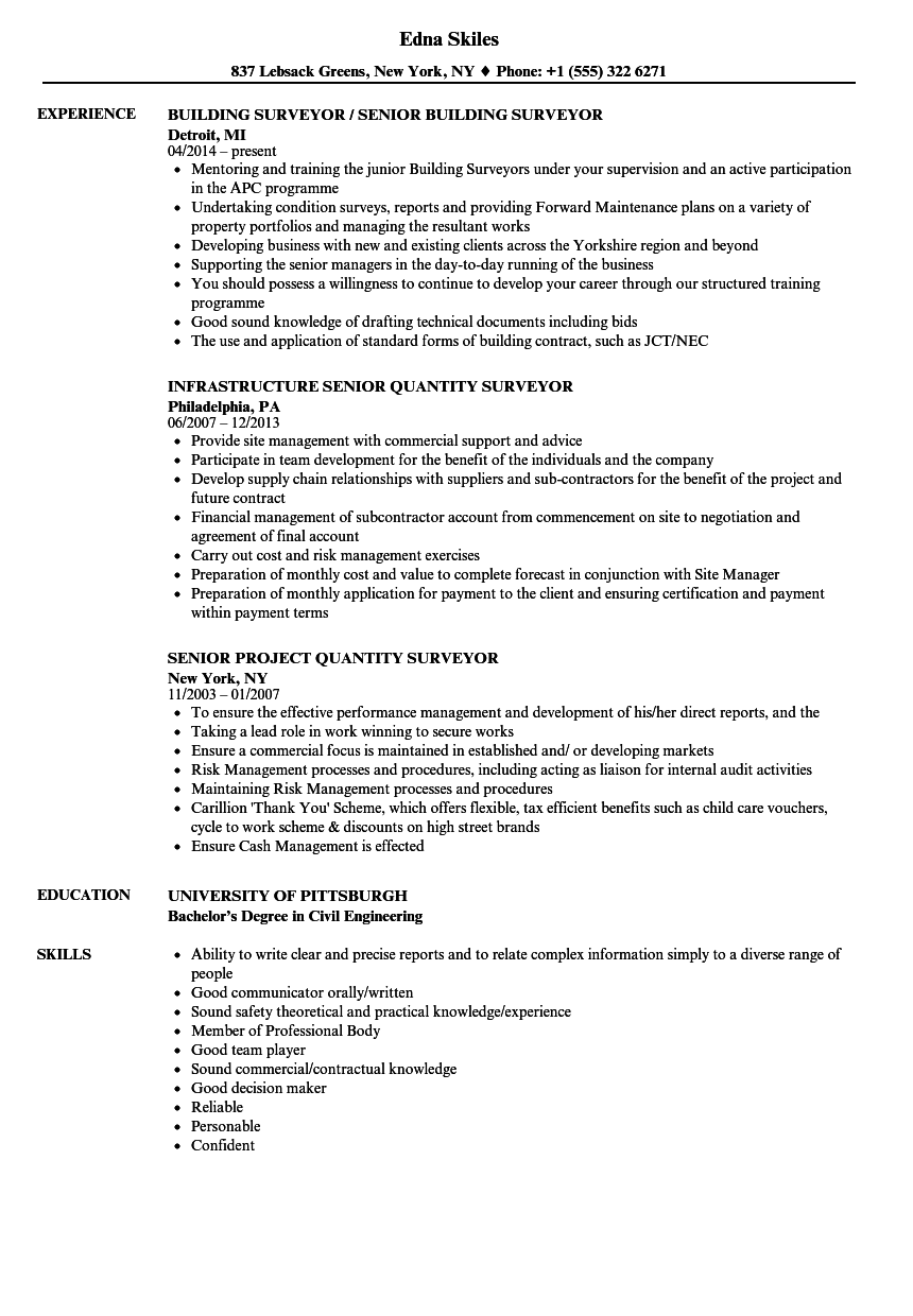 Surveyor Senior Resume Samples  Velvet Jobs