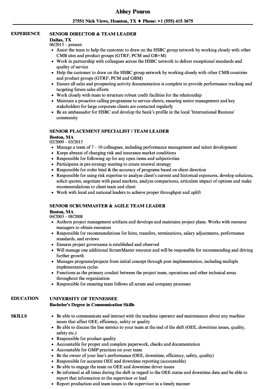 Team Leader Senior Team Leader Resume Samples Velvet Jobs