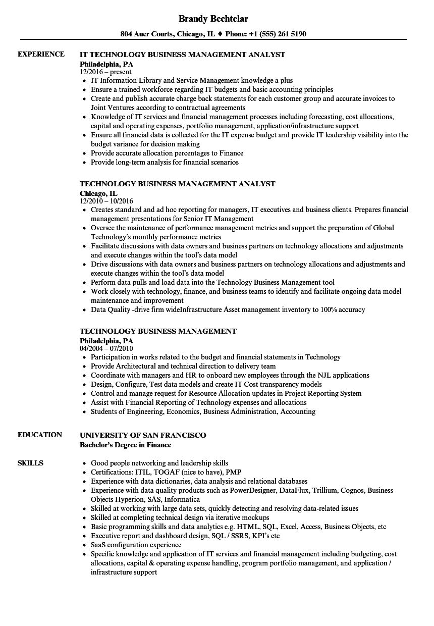 Technology Business Management Resume Samples Velvet Jobs