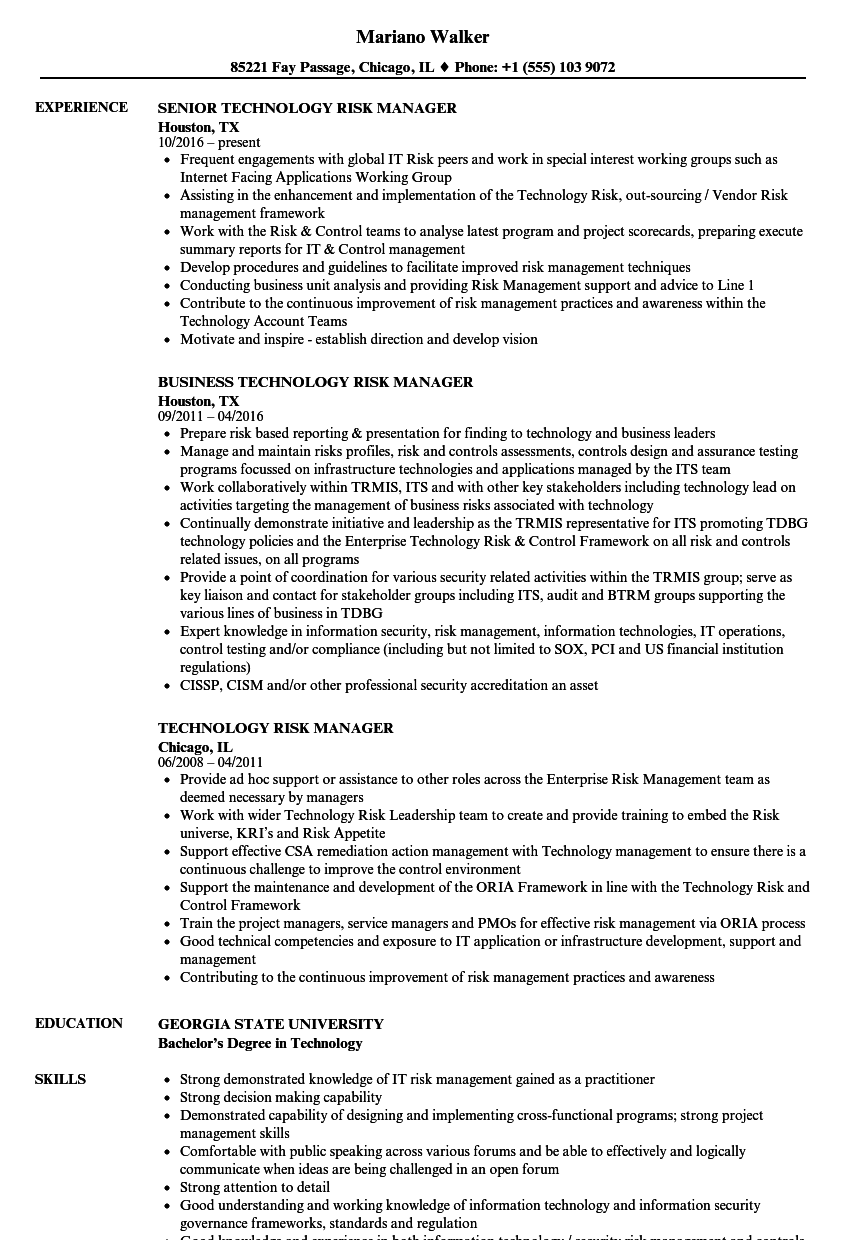 Technology Risk Manager Resume Samples Velvet Jobs