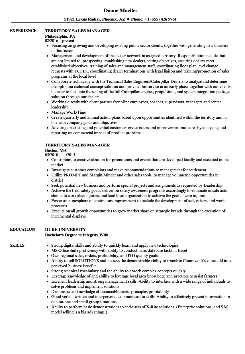 Killer Sales Executive Resume Sample Images Gallery