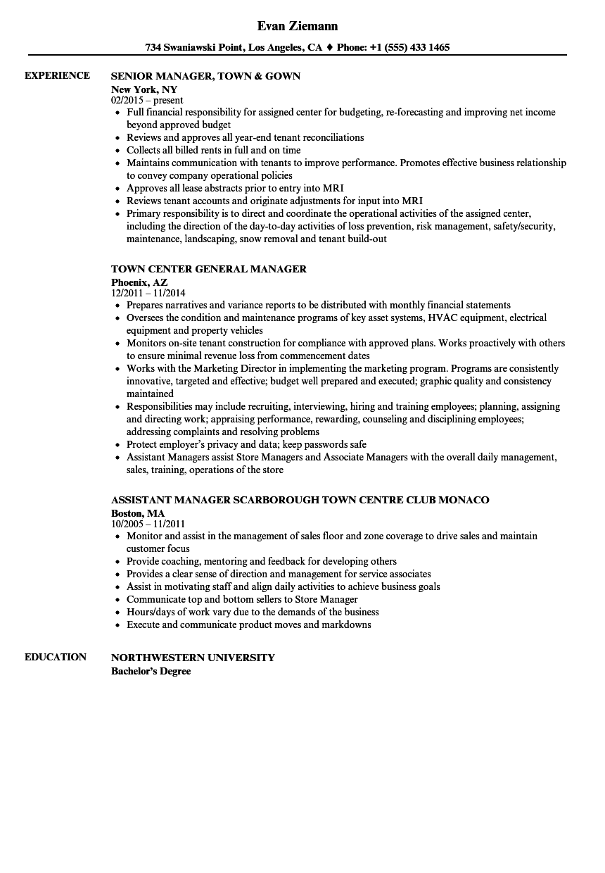 sample resume for town manager