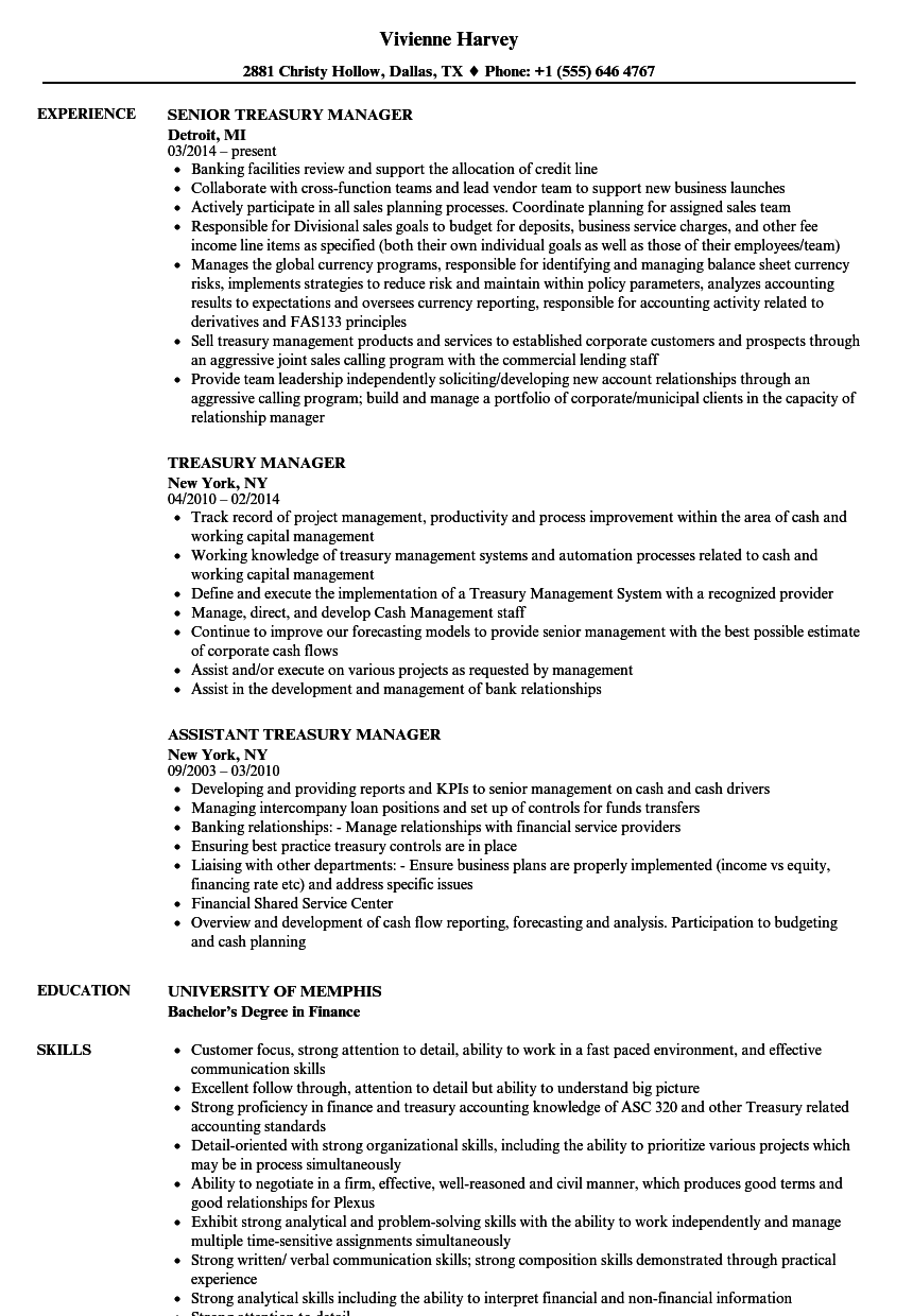 Exelent Deputy Care Manager Resume Component  simple