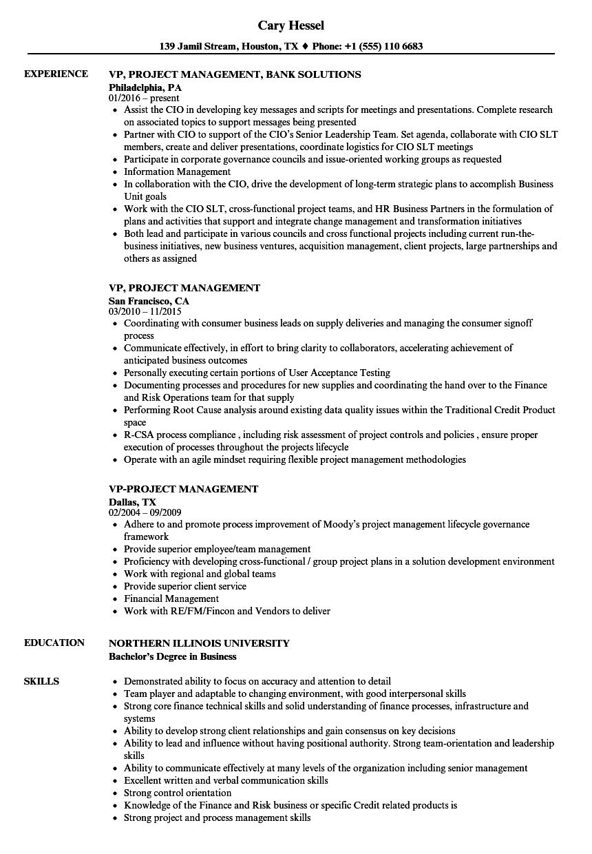 team leadership resume samples