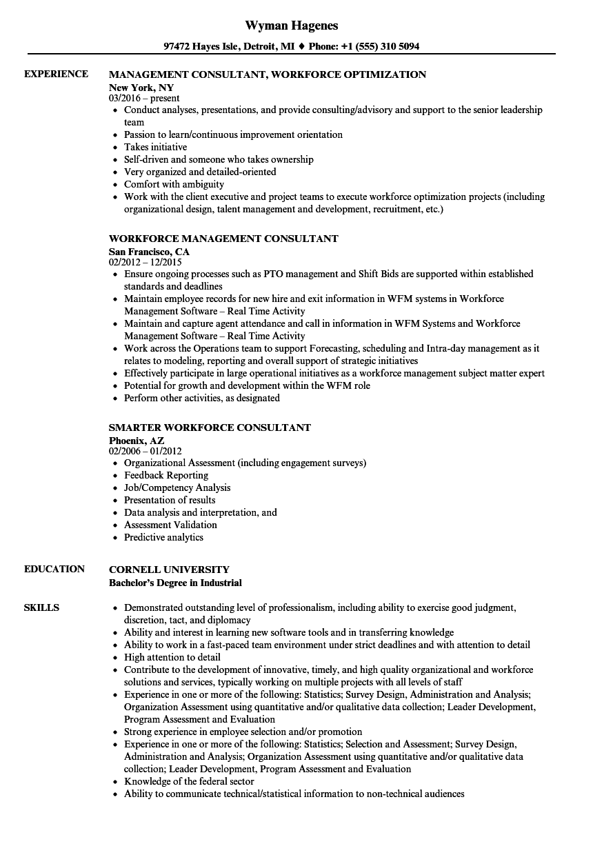 Download Workforce Consultant Resume Sample As Image File