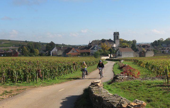 Os vinhos franceses são diferentes dos nacionais?
