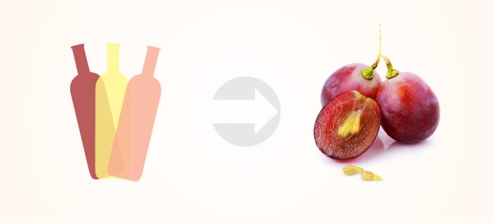 O tanino em cada tipo de vinho