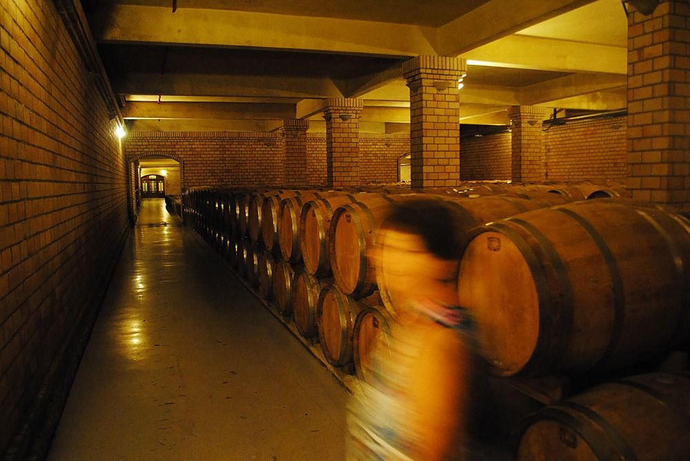 Há vinhos que ficam de 3 até 18 meses em barricas de carvalho