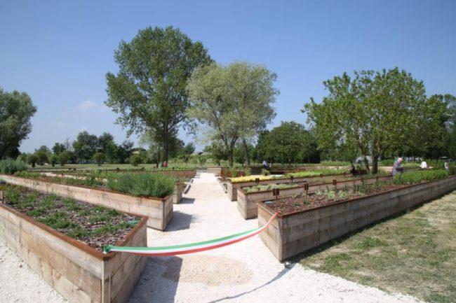 Casa di Anna: inaugurato l'orto giardinoterapico