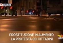 TG Veneto: le notizie del 25 luglio 2019