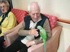 Monastier: in casa di riposo la pet therapy con i pappagalli