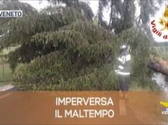 TG Veneto: le notizie del 2 agosto 2019