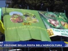 Festa dell'Agricoltura 2019: la 26esima edizione a Mirano