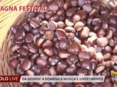Castagna Festival in Piazza Mazzini a Jesolo il programma