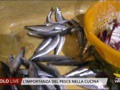 pesce azzurro nella cucina