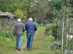 Parco Bissuola: consegnati 76 orti sociali