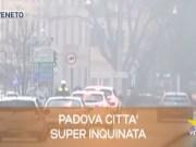 TG Veneto le notizie del 17 ottobre 2019
