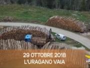 TG Veneto le notizie del 29 ottobre 2019