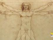 Uomo Vitruviano al Louvre il Tar dice sì