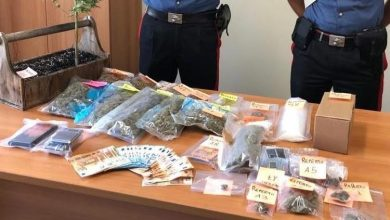 Photo of Vigonovo, in casa sei etti e mezzo di marijuana e uno di hashish: arrestato