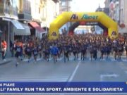 alì family run san donà