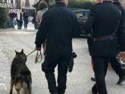 Ristoratore arrestato con hashish e cocaina a Marghera