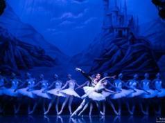 Il lago dei cigni in scena al Teatro Toniolo di Mestre