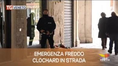 TG Veneto le notizie del 10 dicembre 2019