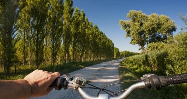 Passarella: al via i lavori per la ciclabile. Saranno piantati 5600 alberi