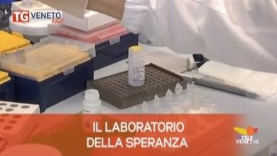 TG Veneto News: le notizie del 4 febbraio 2020
