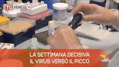 TG Veneto News: le notizie del 2 marzo 2020