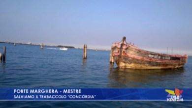 Appello per salvare il trabaccolo Concordia, un'imbarcazione di oltre 130 anni spiaggiata a Forte Marghera. Bisogna far presto