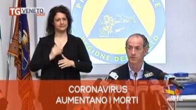 TG Veneto News: le notizie del 17 aprile 2020