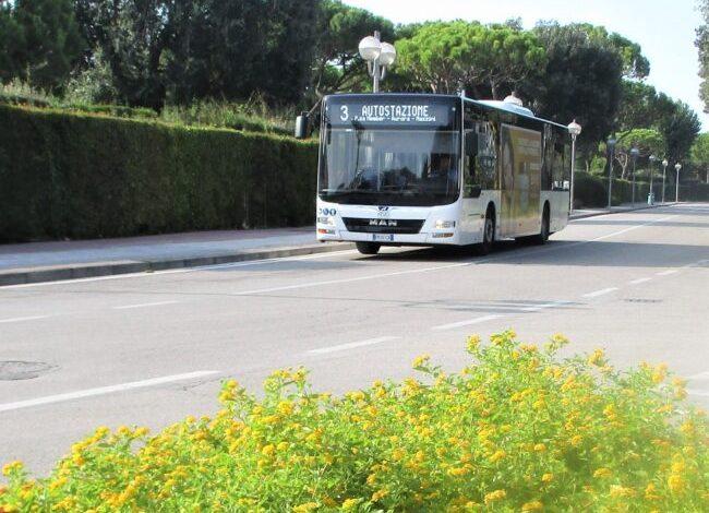 Atvo, inizia l'estate: collegamenti rafforzati con Punta Sabbioni. Novità - Televenezia
