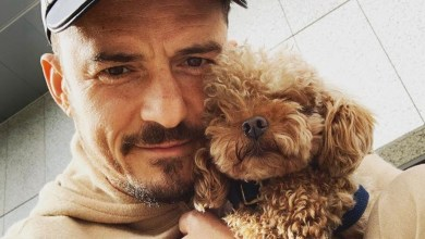 Photo of Un lutto per Orlando Bloom: è morto l'amato barboncino