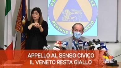 TG Veneto News: le notizie del 13 novembre 2020