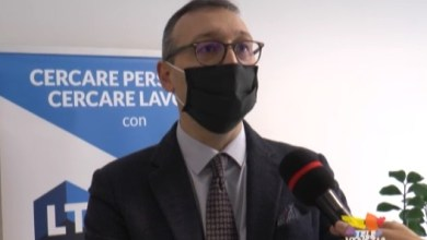 VIDEO: Jesolo Job Day 20201: oltre 1500 iscrizioni per l'Aja - Televenezia