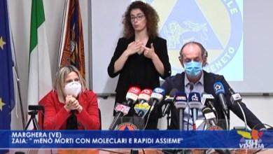 """VIDEO: Tamponi, Zaia: """"meno morti con molecolari e rapidi assieme"""" - Televenezia"""